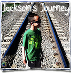Special Needs Causes - Jackson's Journey