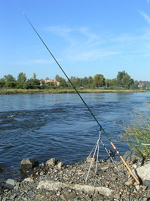 Fishing with a feeder rod Česky: Postavení fee...